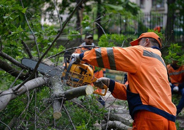 Los trabajos para paliar las consecuencias de la tormenta en Moscú