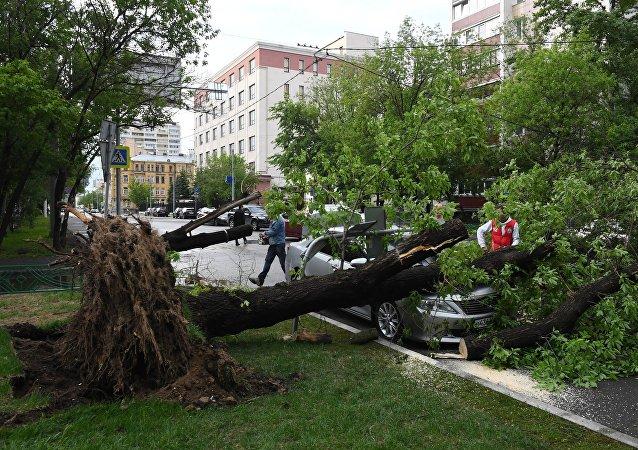 Las consecuencias del huracán de Moscú del 29 de mayo de 2017