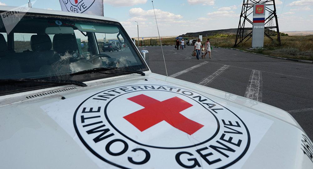 La Cruz Roja entrega ayuda humanitaria a Ucrania (archivo)