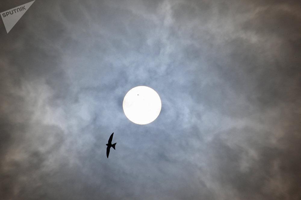La NASA emprende el viaje hacia el Sol