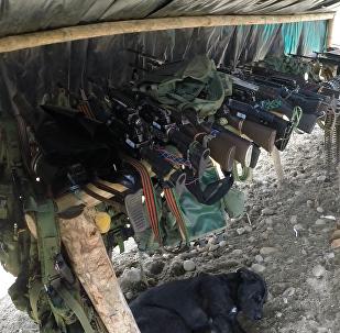 Armamento de las FARC