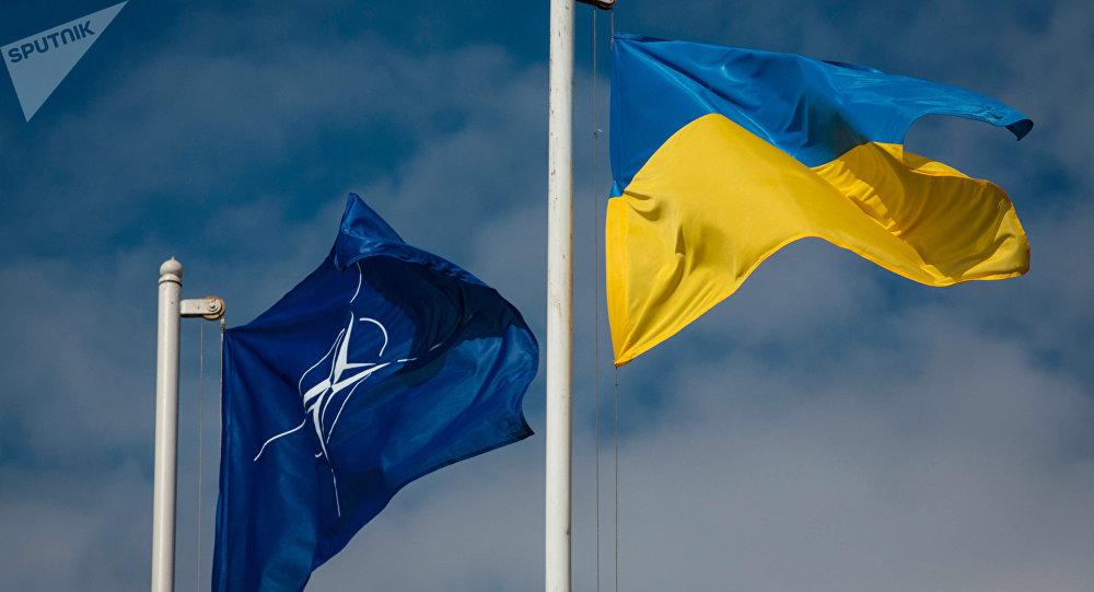 Banderas de Ucrania y de la OTAN