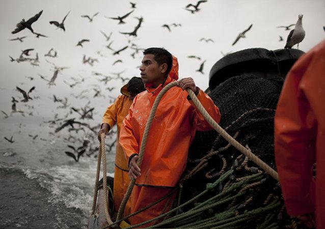 Pescadores de la industria pesquera holandesa en las costas de Perú