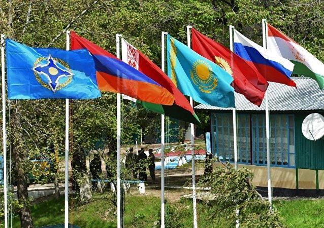 Las banderas de los miembros de OTSC