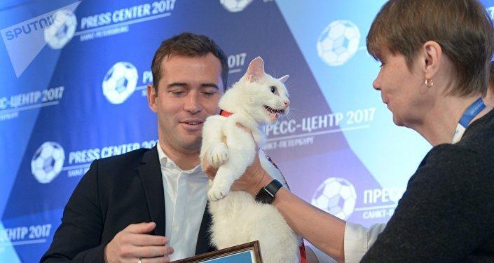 El gato Aquiles, uno de los felinos del museo del Hermitage en San Petersburgo