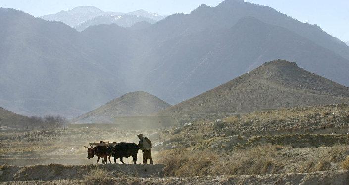 Tora Bora, Afganistán (archivo)