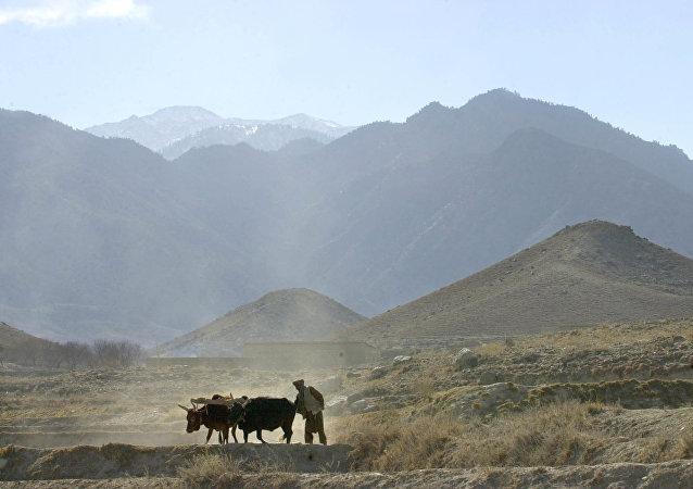 Tora Bora (archivo)