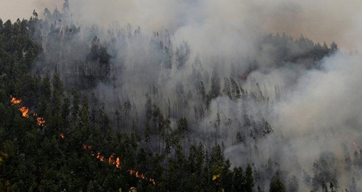 Incendio forestal cerca de Pedrógao Grande, en Portugal