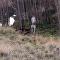 ¡Tranquilos! Un policía separa a un canguro y un perro que 'llegaron a las manos'