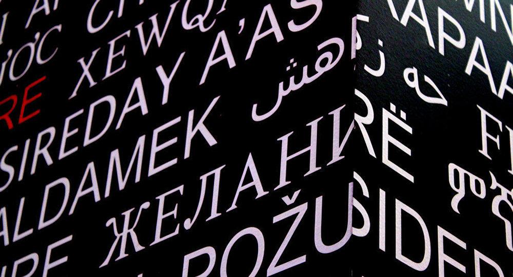Palabras y letras en diferentes idiomas (imagen referencial)