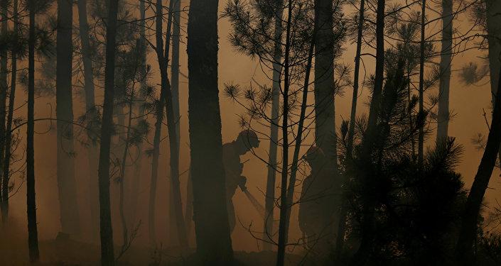 Un incendio forestal (imagen referencial)