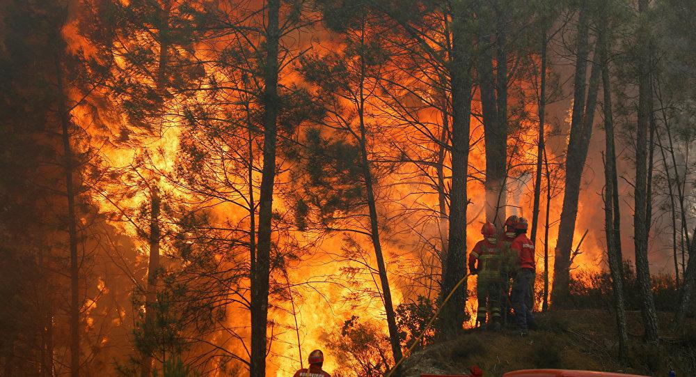Incendios forestales en Portugal, junio de 2017