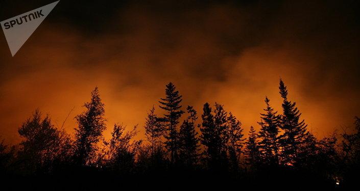 Incendio forestal (imagen referencial)