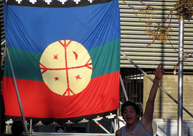 La bandera de mapuche (archivo)