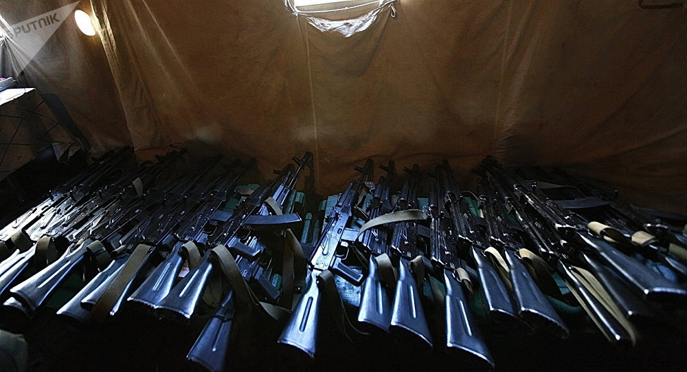 Las armas de fuego (archivo)