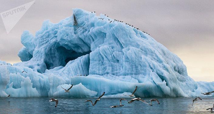 Parque nacional 'Ártico Ruso'