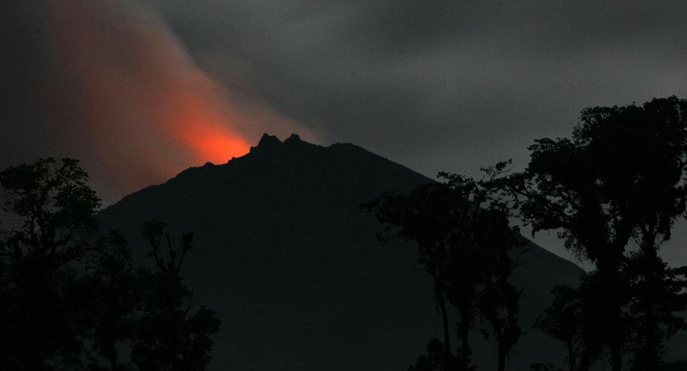 Volcán ecuatoriano Reventador