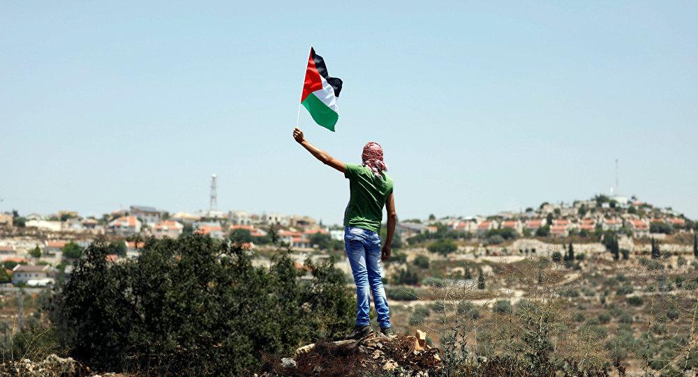 Un protestante con la bandera de Palestina
