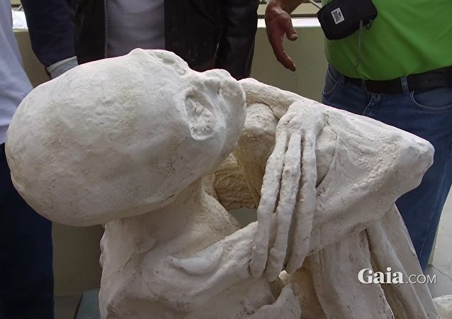 Momia 'extraterrestre' de Perú