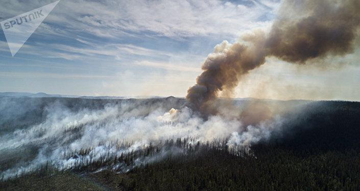 Incendios forestales (imagen referencial)