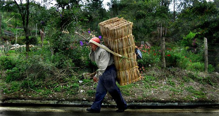 Un campesino colombiano (archivo)