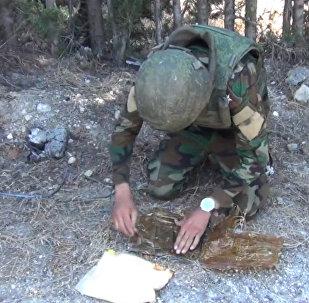 El Ejército sirio desmina la provincia de Latakia