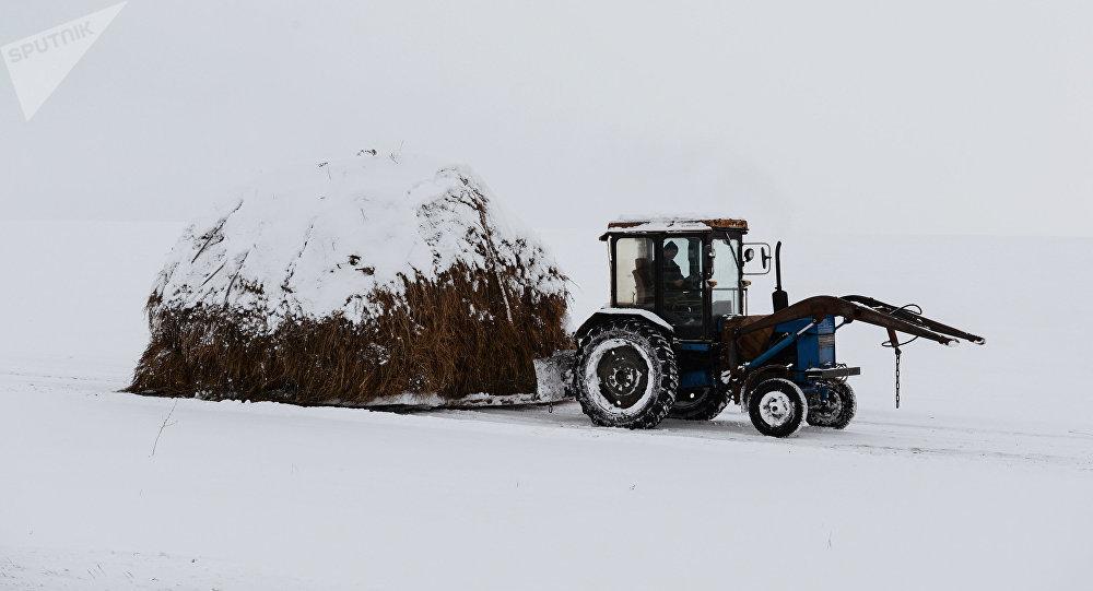 Un tractor en Altái, en el sur de Siberia