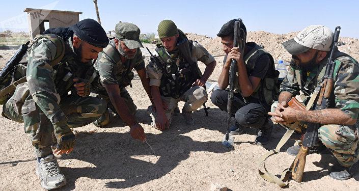 Combatientes sirios al este de Palmira