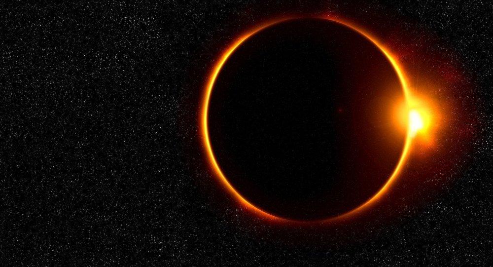 Mantén a tu Mejor Amigo dentro de Casa Durante el Eclipse Solar