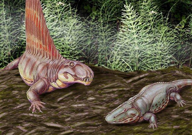Dimetrodon gigas y Eryops megacephalus (ilustración)