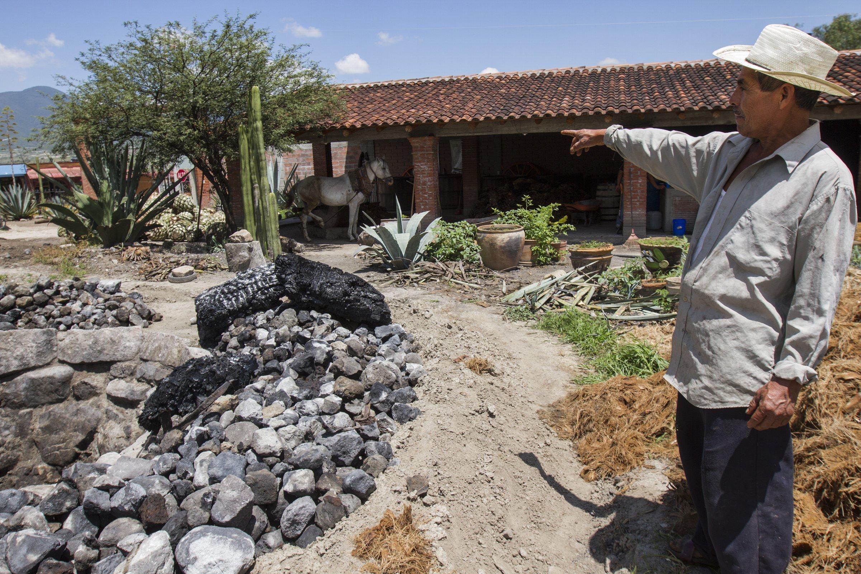 El horno para agave
