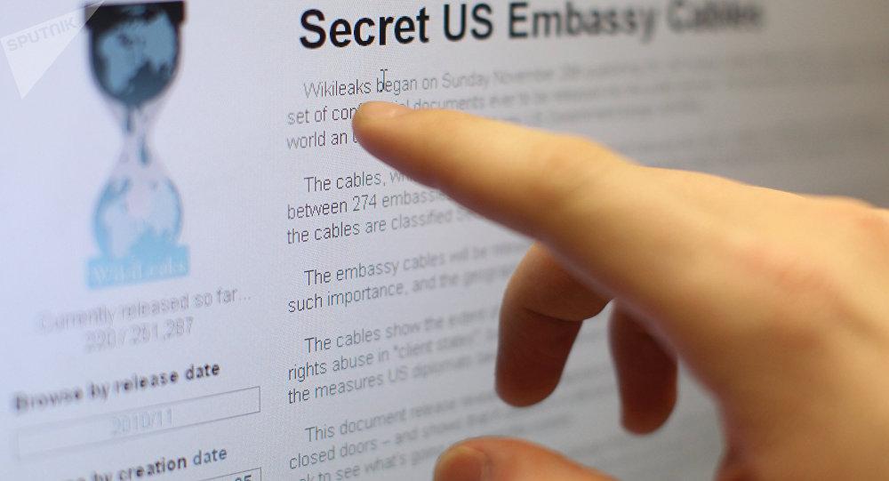 WikiLeaks en un monitor