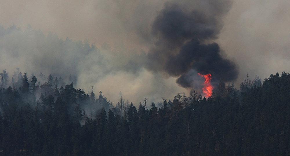 Incendios forestales en Canadá