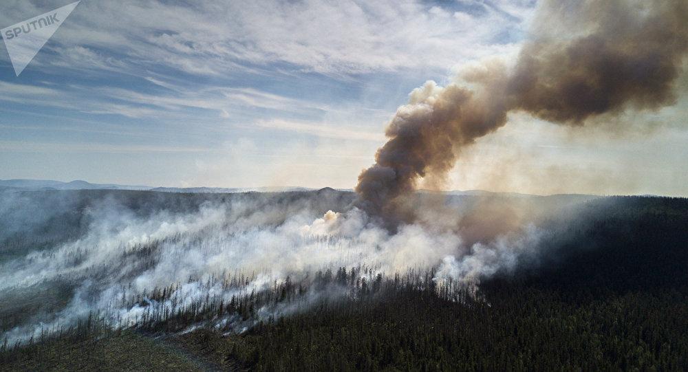 Incendios forestales en Lejano Oriente