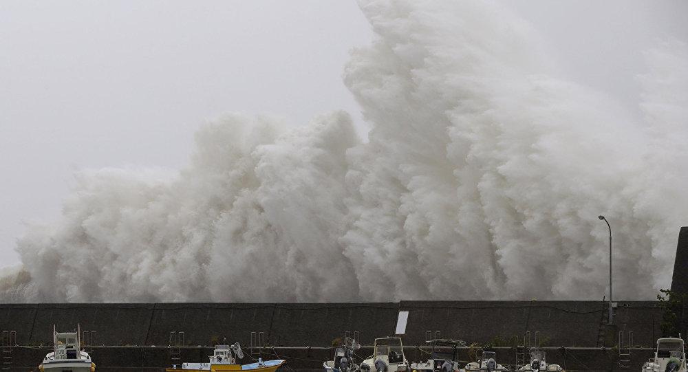 El tifón (archivo)