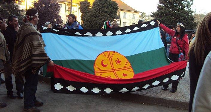 La bandera del pueblo mapuche