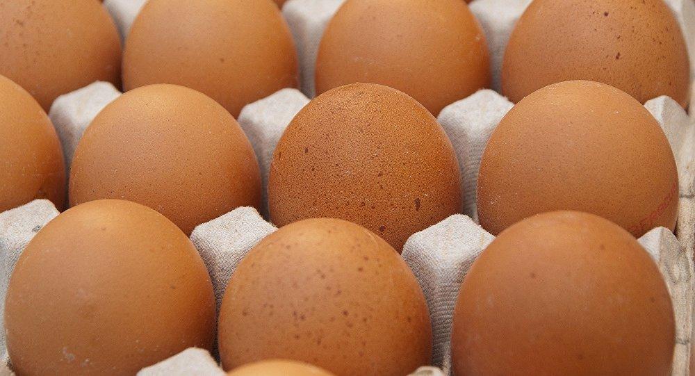 Gobierno de País Vasco español inmovilizó partida de 20.000 huevos contaminados