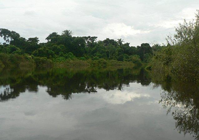El Río Ibare en Beni, Bolivia