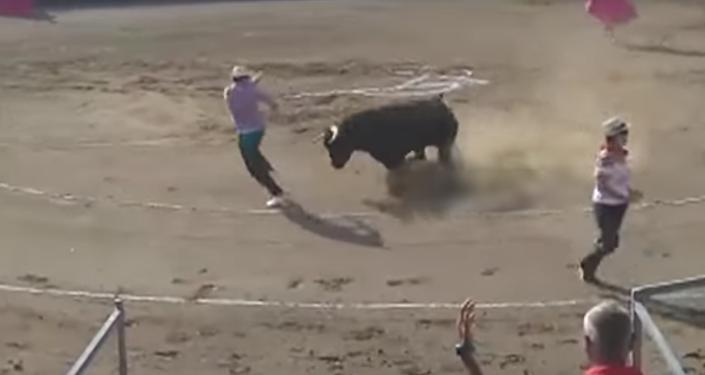 Un toro enviste a una persona durante una corrida