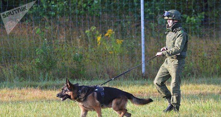 La preparación para los ejercicios militares ruso-bielorrusos Zapad 2017