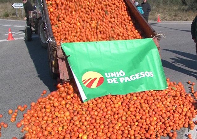 Agricultores españoles afectados por las sanciones contra Rusia tiran a la carretera las frutas podridas