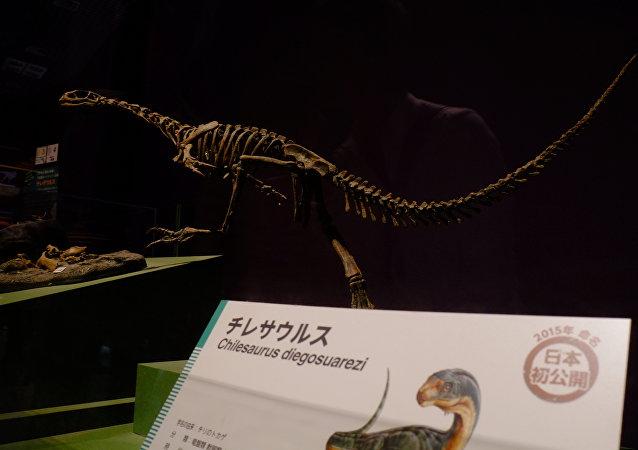 Esqueleto de un Chilesaurus Diegosuarezi (imagen referencial)