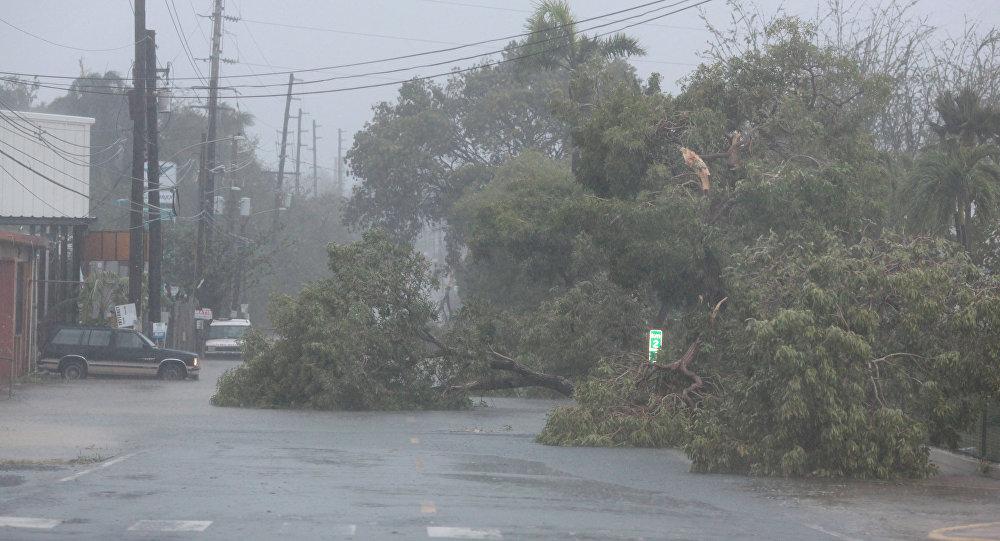 Consecuencias del huracán Irma en Puerto Rico (archivo)