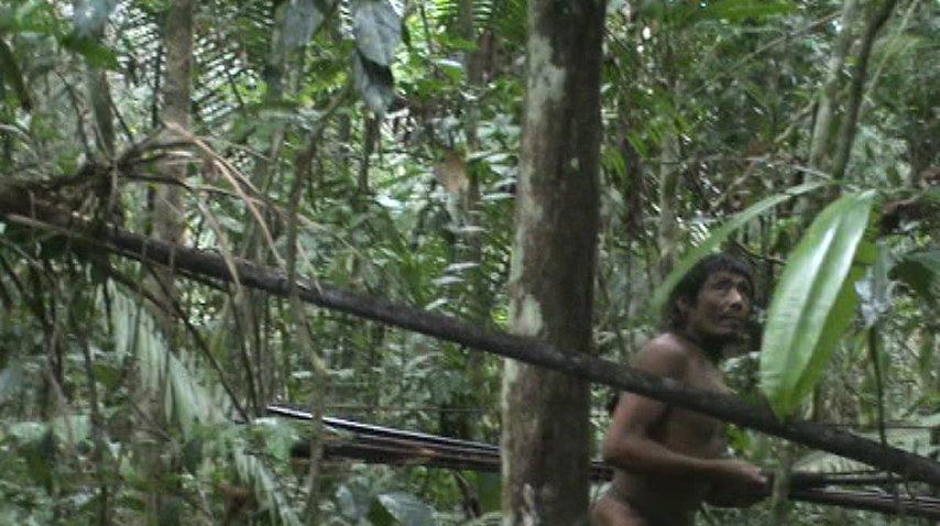Los últimos kawahivas se ven obligados a vivir a la fuga. Esta imagen fue extraída de una grabación única que recoge un encuentro casual de funcionarios del Gobierno con la tribu.