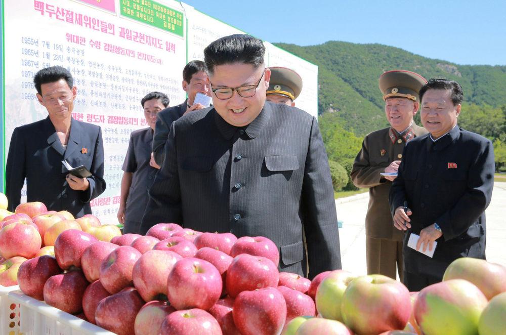 Un viaje muy fructífero: Kim Jong-un visita una granja de cultivos hortícolas