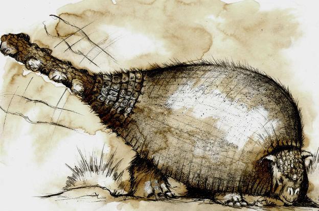 El gliptodonte de Mar del Plata