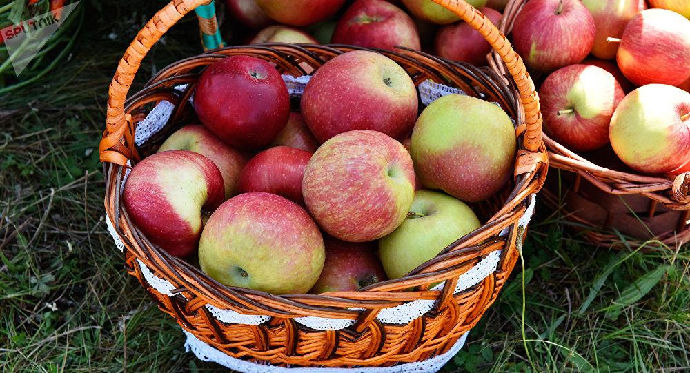 Las manzanas presentadas en una feria agroalimentaria celebrada en la ciudad rusa  de Bryansk
