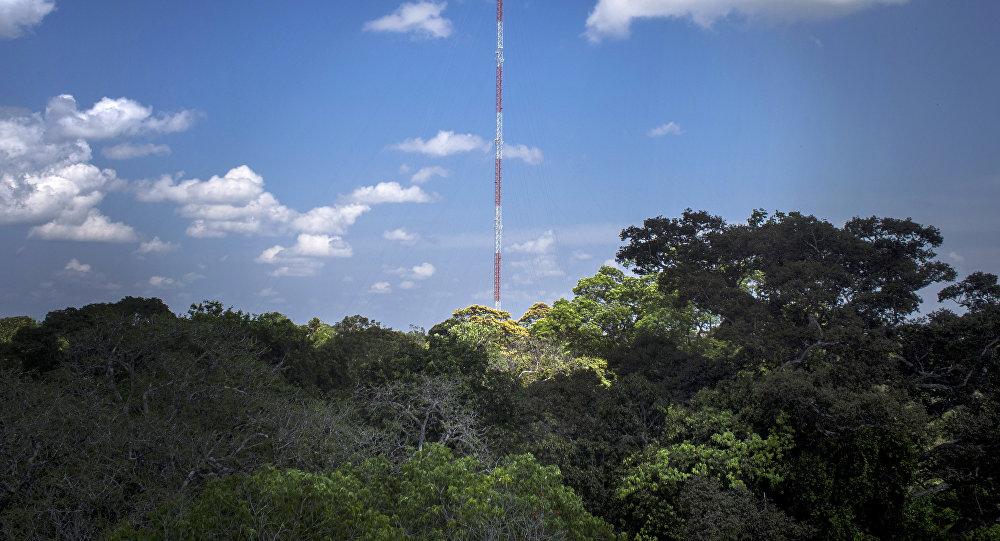 Observatorio de Torre Alta de Amazonía, Brasil (archivo)
