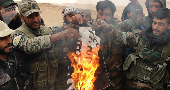 Militares sirios y milicias del grupo Halcones del Desierto queman la bandera de Daesh en Palmira (archivo)