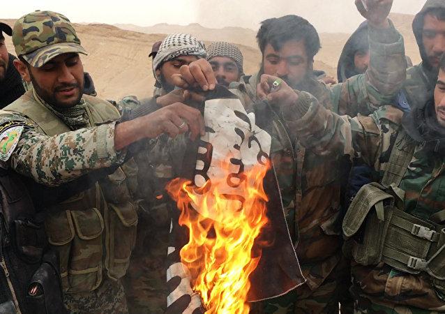 Militares sirios y milicias del grupo Halcones del Desierto queman la bandera de Daesh en Palmira